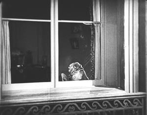 so-ths-is-paris-sheik-in-window