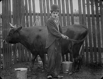 The Tramp Charlie & Cow