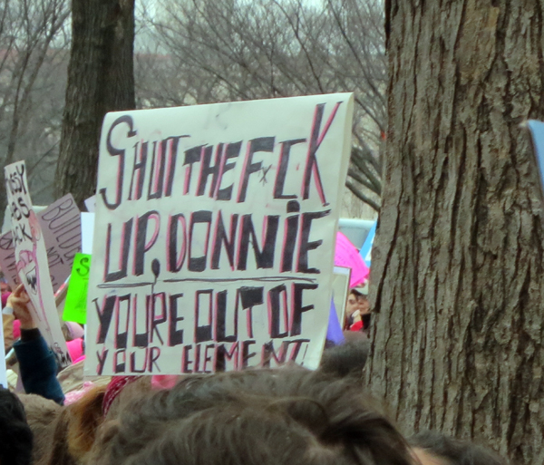 Women's march 2 600