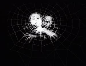 spiderweb 300
